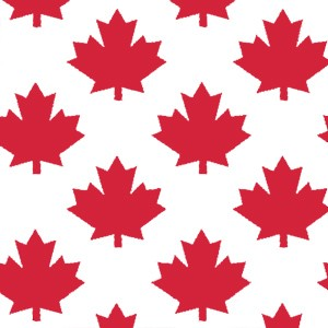 "Canada 150 Pattern Tissue Paper - Maple Leaf - 20"" x 30"""